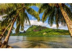 景观,云,天空,岛,波拉波拉岛,棕榈树,海,湾,山,热带249782