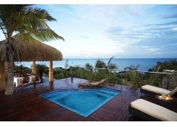 摄影,景观,采取,豪华,棕榈树,海,热带,莫桑比克,非洲485806