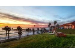 景观,棕榈树,加州,美国,日落,云,海,海滩,旅馆,丘陵,草,领域,科,