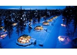 景观,树木,森林,冬季,雪,晚间,灯火,雪屋,旅馆,现代,松树,玻璃,床