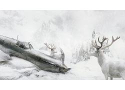 景觀,馬丁斯特蘭卡,Photoshop中,動物,冬季,雪,鹿,飛機,緊急,事故