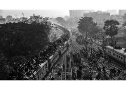 攝影,景觀,單色,市,培養,人,穆斯林,朝圣者,建造,樹木,孟加拉國34