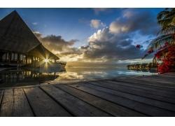 日落,大溪地,法属波利尼西亚,采取,海,热带,棕榈树,太阳光线,走道