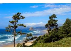 景觀,攝影,早上,海灘,海,砂,樹木,丘陵,灌木,俄勒岡342403