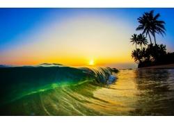 景觀,陽光,早上,海灘,海,波浪,棕櫚樹,砂,液體,水217643