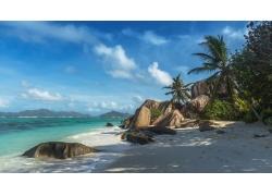 摄影,景观,海滩,砂,棕榈树,岩石,热带,岛,海,早上,阴影,夏季,塞舌