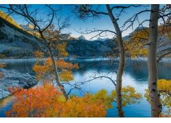 摄影,景观,湖,山,树木,秋季,早上,阳光,平静的水域,加州485804