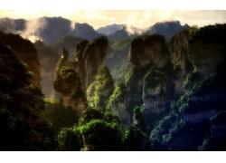 景觀,山,森林,日落,薄霧,石灰石,巖,中國,阿凡達,世界遺產,樹木24