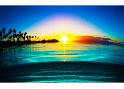 景观,水,薄雾,液体,海滩,棕榈树,海,冷静,黄色,蓝色218403