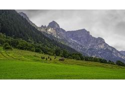 景观,山,森林,阿尔卑斯山,云,草,蒂罗尔,奥地利,车辆,夏季,绿色29