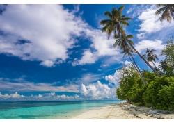 景观,摄影,热带,海滩,伊甸园,白色,砂,棕榈树,岛,海,云,夏季,马来