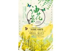 油菜花图片 油菜花海报 (11)