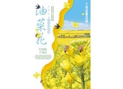 油菜花图片 油菜花海报 (14)