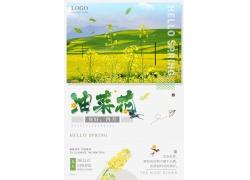 油菜花图片 油菜花海报 (15)