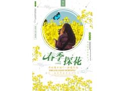 油菜花图片 油菜花海报 (25)
