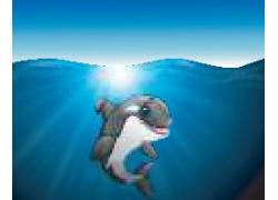 海洋里的海豚