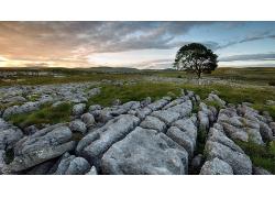 岩石地风景摄影图片
