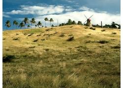 蓝天白云风力车大风车景观风景风光摄影图片