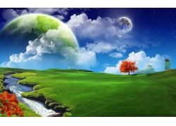 太阳红树草地
