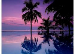 海上霞光景觀圖