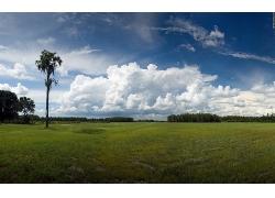 草原草地天空树木风景风光景观照片