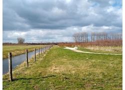草地旁清澈的小溪流