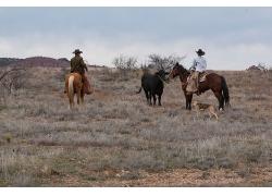 在宽阔的草地上两位骑马的男人