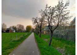 小屋草地公路