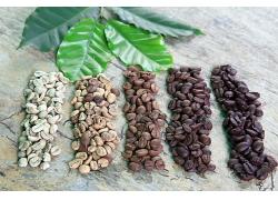 自然清新简约质朴咖啡豆咖啡原料白色咖啡豆底图海报背景图高清图