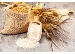 小麦面粉天然美食食品白色粉末海报背景高清图片
