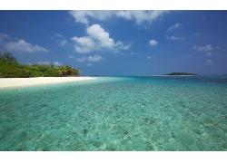 蓝天白云清澈海水海边沙滩绿洲景观风景高清图片