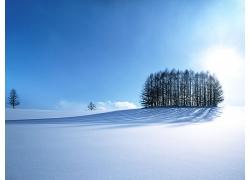 冬季银白色的雪景