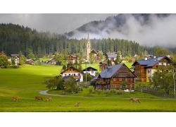 美丽优美平原草原森林边房屋建筑牧民房草地自然景观风景高清图片