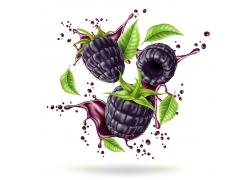 蓝色紫色浆果海报广告素材美食高清图片