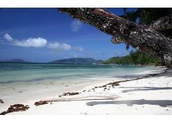 美丽海水海边白色沙滩景观美丽风景高清图片