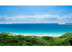 美丽蔚蓝大海海边绿植海滩海岸景观美景高清图片