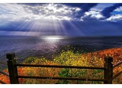 优美美丽山边海滩大海野花山路阳光光线景观美景高清图片