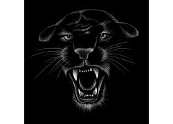 手绘豹子头像