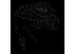 手绘动物头像蜥蜴