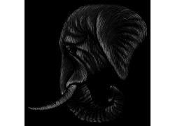 动物大象头矢量手绘插画