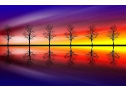 整齐排列的湖边小树与渐变光影