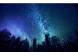 唯美的银河星空与树林夜景