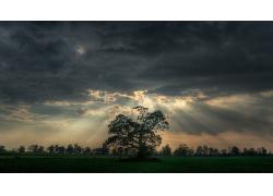 黄昏阳光穿透云彩照射草地